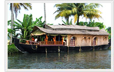 Cochin Backwater