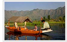Dal Lake - Srinagar